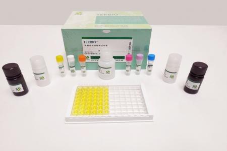 维生素B12(氰钴氨素)检测试剂盒